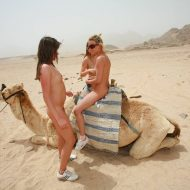 Egyptian Camel Day Tour