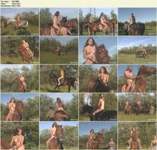 BartDude - Holy nature horses