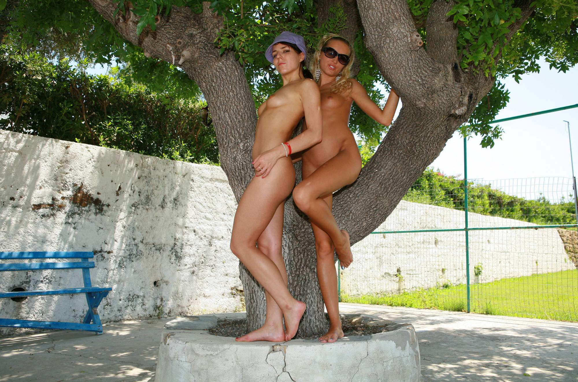 Greek Tree Exploring Trio - 2